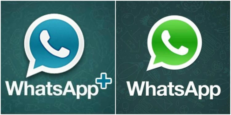 WhatsApp + vs WhatsApp
