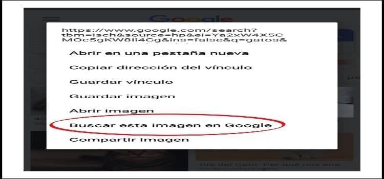 Buscar por imagen en móvil